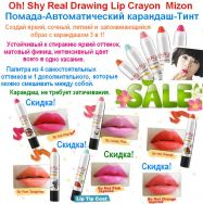 Oh!Shy Real Drawing Lip Crayon Mizon.