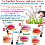 Oh!Shy Real Drawing Lip Crayon Mizon.