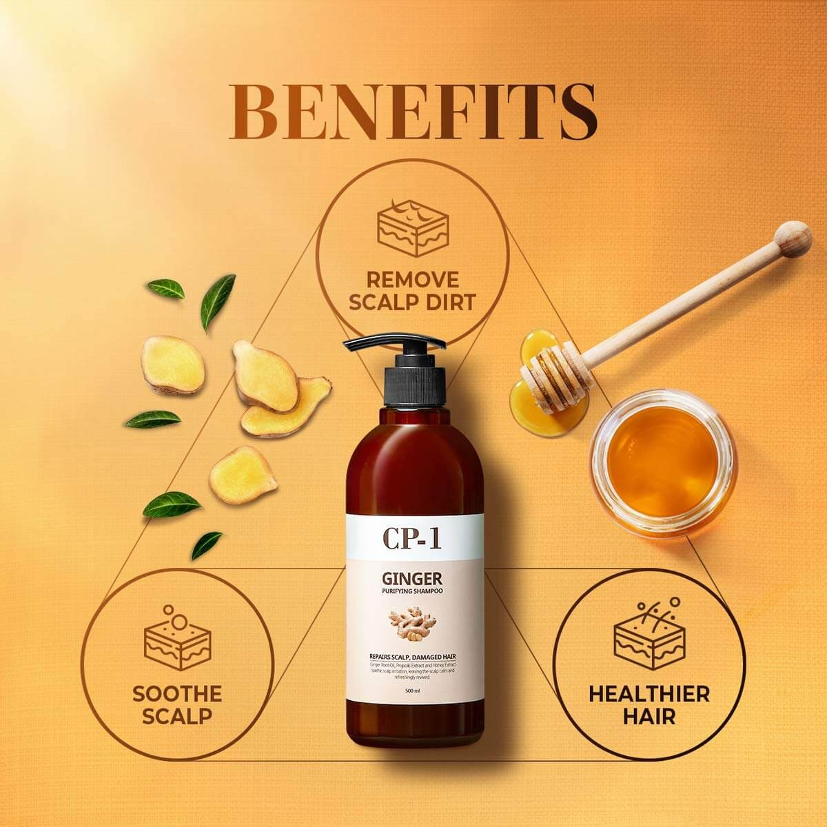 CP-1 Ginger Purifying Shampoo [Esthetic House]