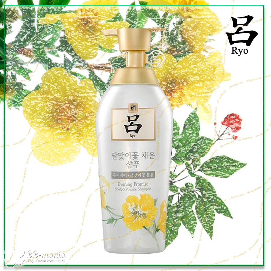 Evening Promise Scalp&Volume Shampoo [Ryo]