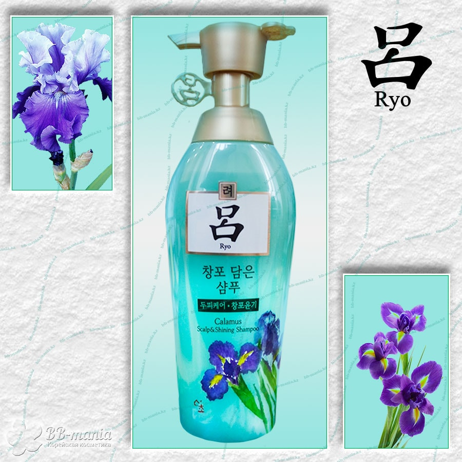 Calamus Scalp & Shining Shampoo [Ryo]