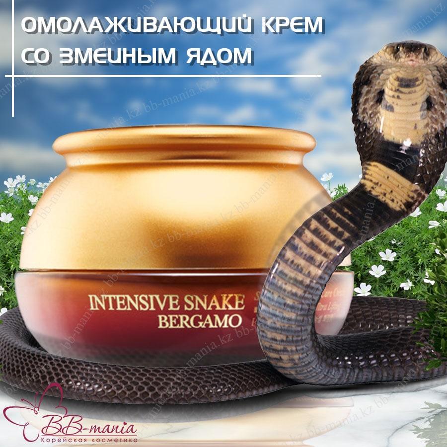 Intensive Snake Wrinkle Care Cream [Bergamo]