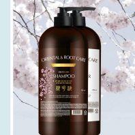 Pedison Institut-beaute Oriental Root Care Shampoo [EVAS]