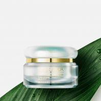 Super Aqua Cell Renew Snail Cream [Missha]