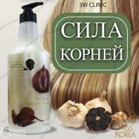 Black Garlic Shampoo [3W CLINIC]