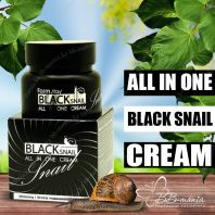 Black Snail All In One Cream [FarmStay]