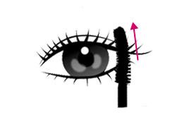 http://bb-mania.kz/images/upload/Delightcirclelensmascaracurlingbrush1.jpg