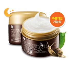 Snail Wrinkle Care Sleeping Pack [Mizon]