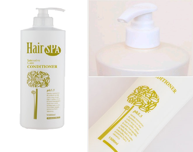Professional Hair Spa Intensive Care Conditioner [Haken]