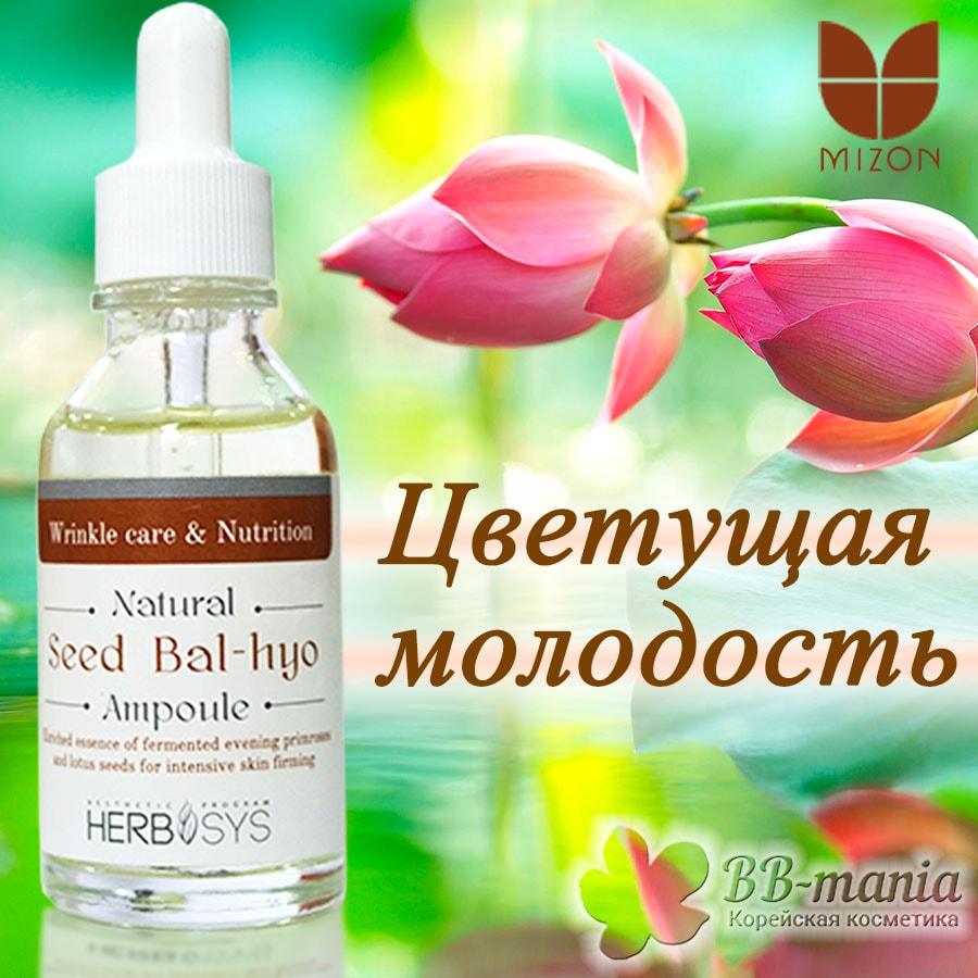 Natural Seed Bal-Hyo Ampoule [Mizon]