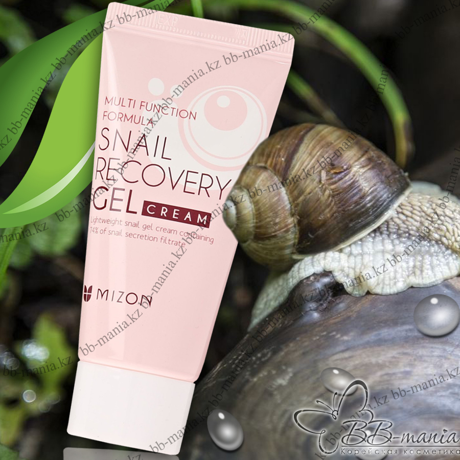 Snail Recovery Gel Cream 74% Anti-Aging Cream [Mizon]