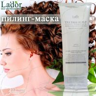 Tea Tree Scalp Hair Pack [La'dor]
