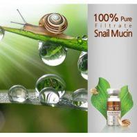Snail Mucin Filtrate 100 [Ramosu]