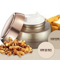 Red Ginseng Snail Cream [Scinic]